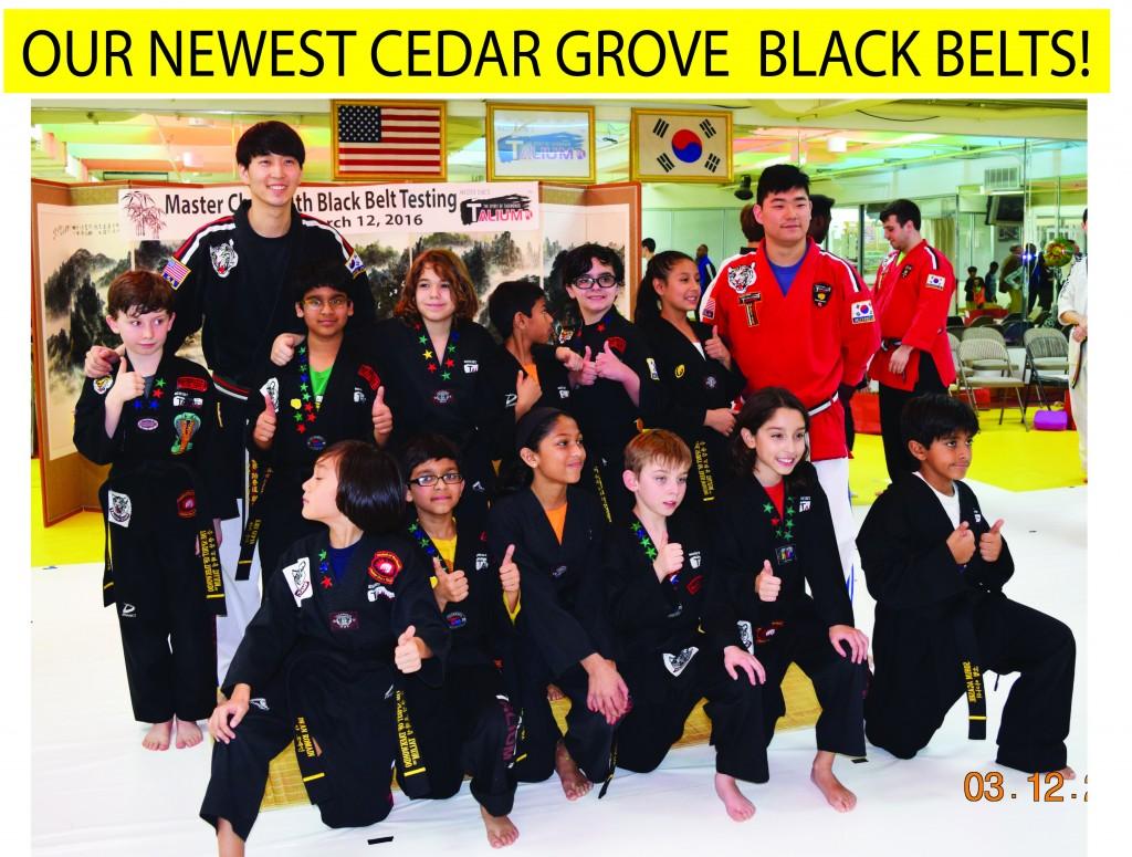 15 CG GROUP