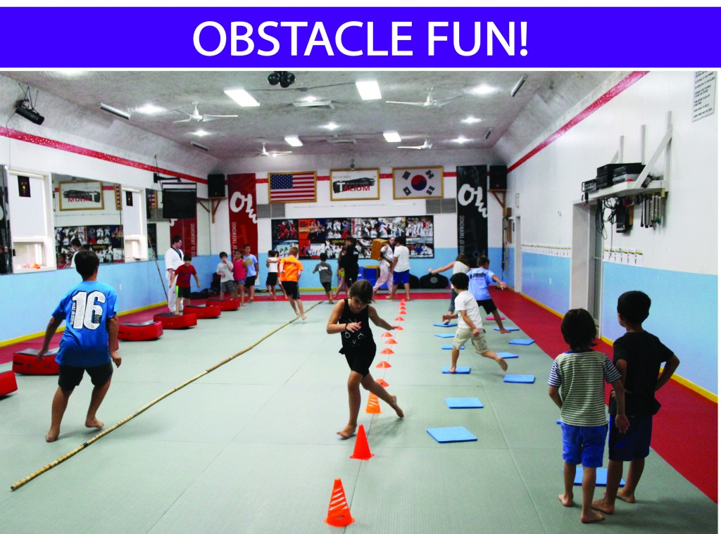 1 OBSTACLE