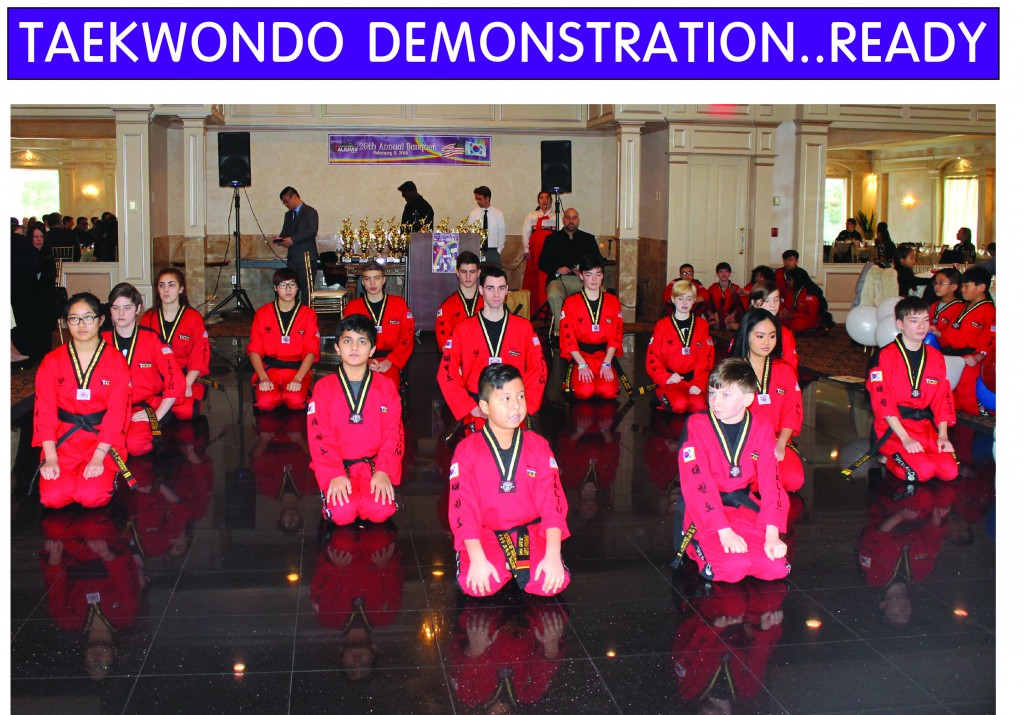 3 TAEKWONDO DEMONSTRATION READY
