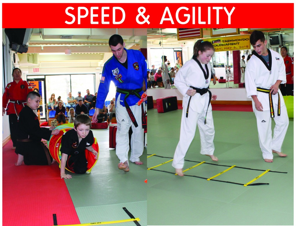 12 TAEKWONDO SPEED & AGILITYai