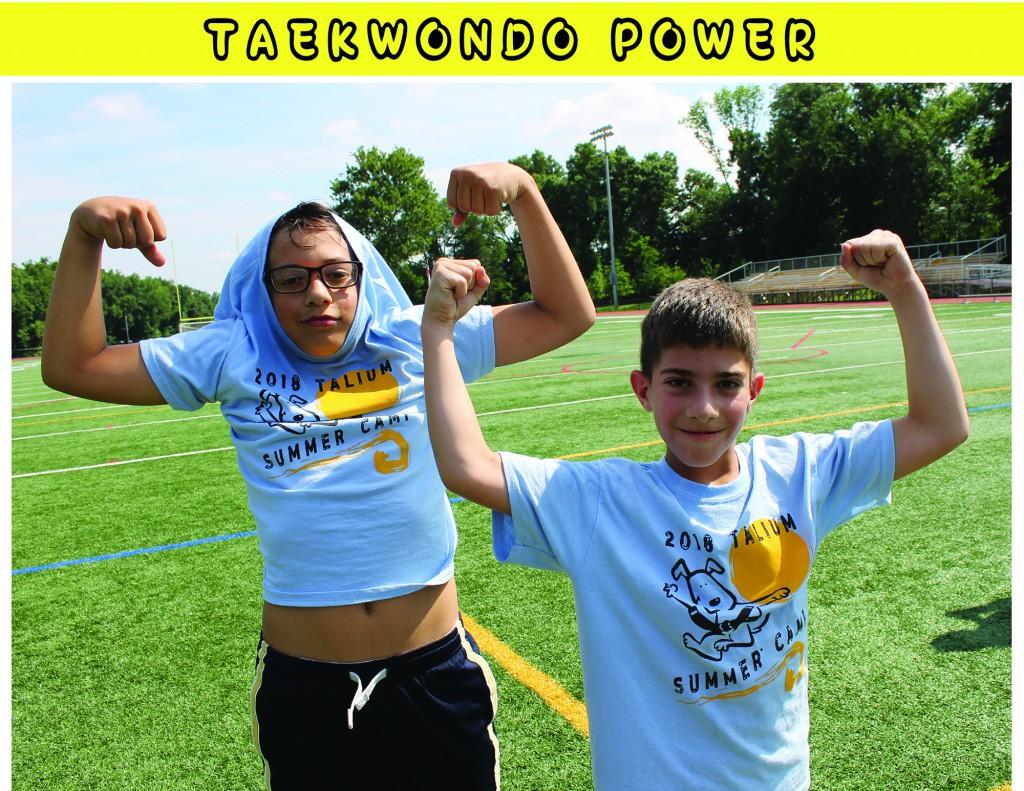 3 TAEKWONDO POWER
