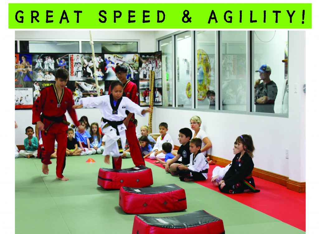 5 TAEKWONDO SPEED & AGILITY