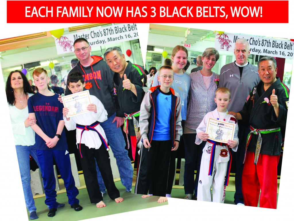 26 EACH FAMILY 3 BLACK BELTS TALIUM